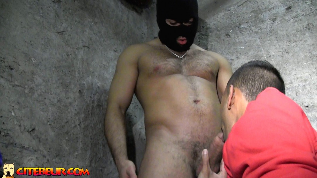 KarimGayStudent FuckedbyArab basement003